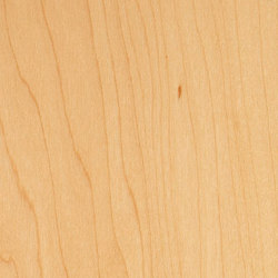 Decospan Maple | Furniere | Decospan