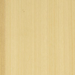 Decospan Poplar Us | Veneers | Decospan