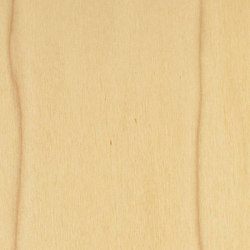 Decospan Poplar Us White | Placages | Decospan
