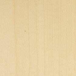 Decospan Sycamore | Wall veneers | Decospan