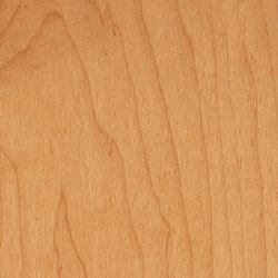 Decospan Sycamore Steamed | Veneers | Decospan