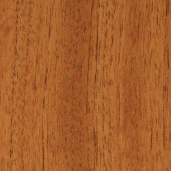 Decospan Cedar South American | Piallacci | Decospan