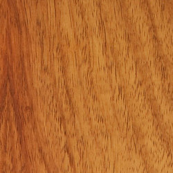 Decospan Narra New Guinea Rosewood | Placages | Decospan