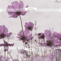 Frames Meadow | Bespoke wall coverings | GLAMORA
