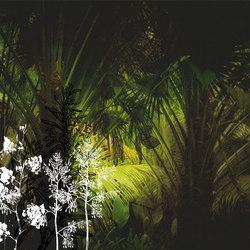 Frames Palms | Wandbeläge | GLAMORA