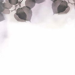 Frames Shadow | Wall coverings | GLAMORA
