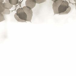 Frames Shadow | Wandbeläge | GLAMORA