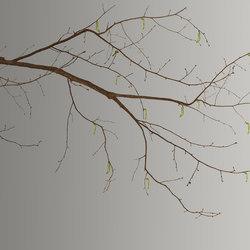 Essence Sakura | Revestimientos de pared | GLAMORA