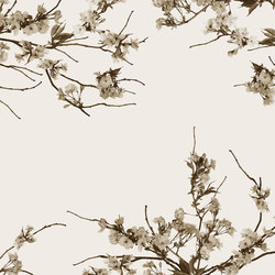 Essence Korean Blossom | Bespoke wall coverings | GLAMORA