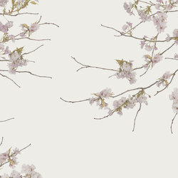 Essence Korean Blossom | A medida | GLAMORA