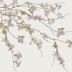 Essence Korean Blossom | Wall coverings | GLAMORA
