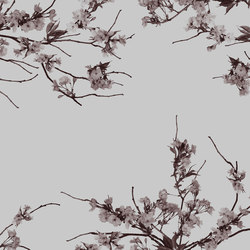 Essence Korean Blossom | Wall coverings | GLAMORA