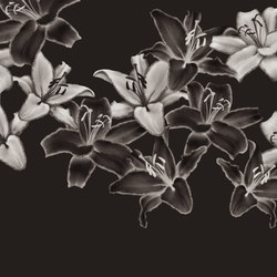 Essence Darklight | A medida | GLAMORA