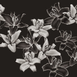 Essence Darklight | Rivestimenti pareti | GLAMORA