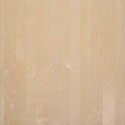 Nordus Snow Birch | Veneers | Decospan