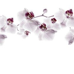 Essence Glitter Diva | Wandbeläge | GLAMORA