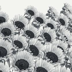 Essence Heatwave | Wandbeläge | GLAMORA