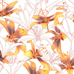 Essence Northstar | Bespoke wall coverings | GLAMORA