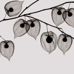 Visions Asakusa | Revêtements de murs | GLAMORA