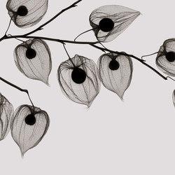Visions Asakusa | Bespoke wall coverings | GLAMORA
