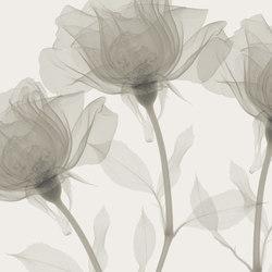 Visions Inner Sense | Bespoke wall coverings | GLAMORA