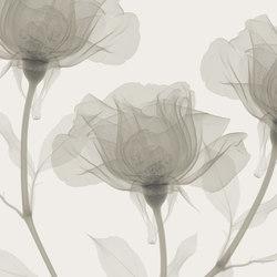 Visions Inner Sense | Rivestimenti su misura | GLAMORA