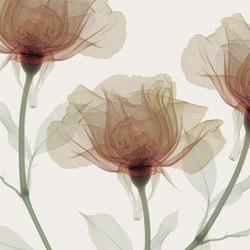 Visions Inner Sense | Wall coverings | GLAMORA