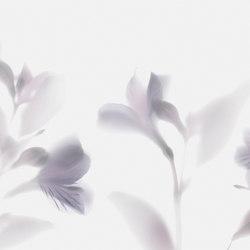 Visions Lazy Sundae | Bespoke wall coverings | GLAMORA
