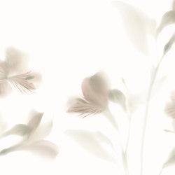 Visions Lazy Sundae | A medida | GLAMORA