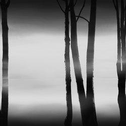 Visions Lifelines | Rivestimenti pareti | GLAMORA