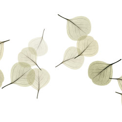 Visions Light Breeze | Wall coverings | GLAMORA
