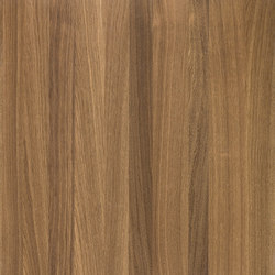 Querkus Oak Smoked Arabica | Wand Furniere | Decospan