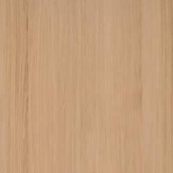 Shinnoki Ivory Oak | Wall veneers | Decospan
