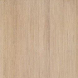 Shinnoki Milk Oak | Chapas | Decospan