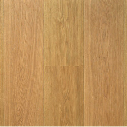 Landhausdiele Eiche Natur Ruhig | Wood flooring | Trapa