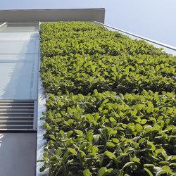 SKYFLOR® - Système de façades verticales végétalisées | Façades | Creabeton Matériaux