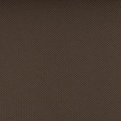 Hitch Neutra | Tissus d'ameublement d'extérieur | SPRADLING