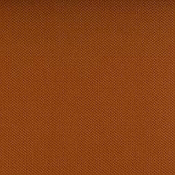 Hitch Tangerine | Outdoor upholstery fabrics | SPRADLING