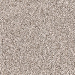 Smoozy 1602 | Wall-to-wall carpets | OBJECT CARPET