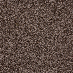 Smoozy 1605 | Carpet rolls / Wall-to-wall carpets | OBJECT CARPET