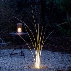 MunichReeds | Outdoor floor lights | Lichtlauf