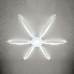 Surfin' ceiling & wall - spider 6 arms | General lighting | Millelumen