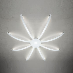 Surfin' ceiling & wall - spider 8 arms | General lighting | Millelumen