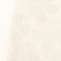 Ava - Eden - Vaniglia Lucido Fleur | Carrelage mural | La Fabbrica