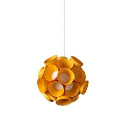 Dandelion | Allgemeinbeleuchtung | lzf