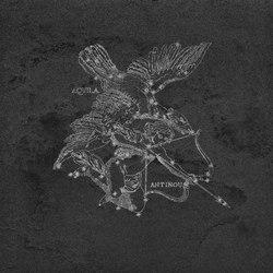 La Fabbrica - Pietra Lavica - Aquila Gryphea | Keramik Platten | La Fabbrica