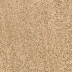 Q-Stone Opus Sand | Tiles | EMILGROUP