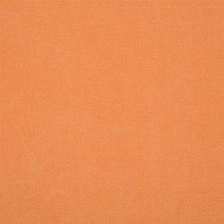 Canvas - Zinnia | Tissus pour rideaux | Designers Guild