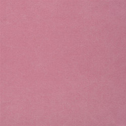 Canvas - Cerise | Curtain fabrics | Designers Guild