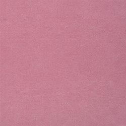Canvas - Cerise | Tissus pour rideaux | Designers Guild